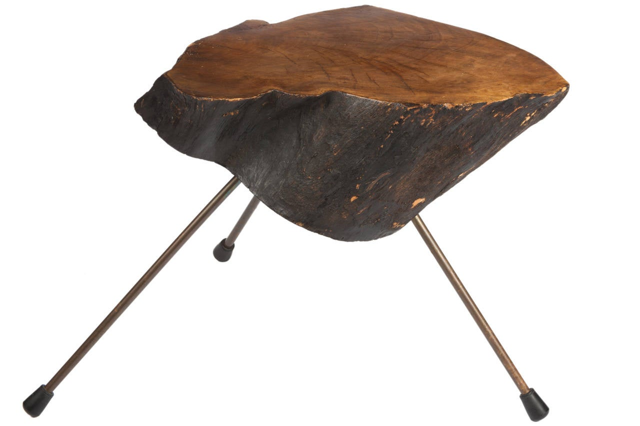 Signed Carl Aub Ck Tree Trunk Table At 1stdibs