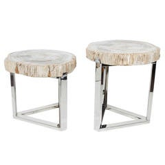 Pair of Petrified Wood Slab Side Tables with Chrome Bases