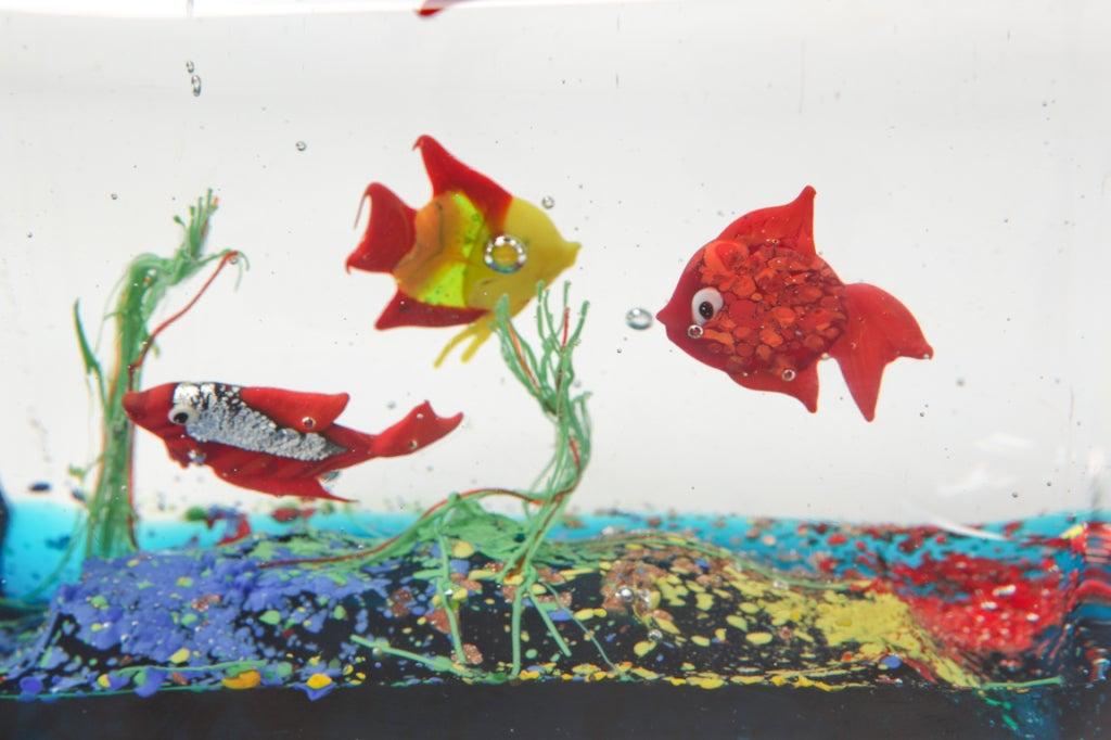 Cenedese Glass Block Aquarium Sculpture 4