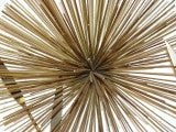 C Jere Brass Sea Urchin Sputnik Metal Wall Sculpture Tree image 7