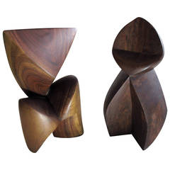 Abstract Tropical Wood Sculptures by Unknown Artist