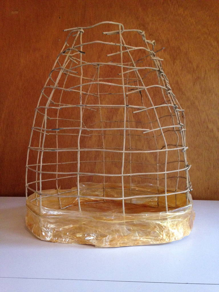 Wire Basket Cage Sculpture by Susan Eisler 2