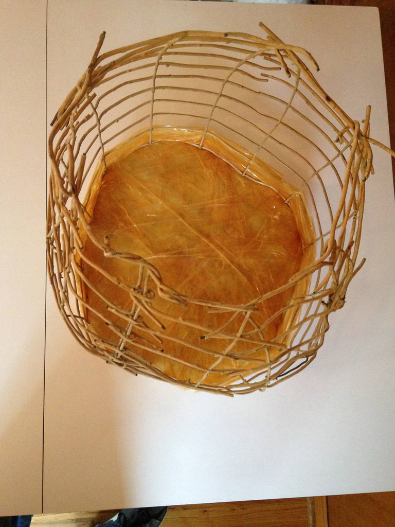 Wire Basket Cage Sculpture by Susan Eisler 8