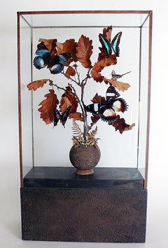 A natural diorama with butterflies leaned over oak tree branches.