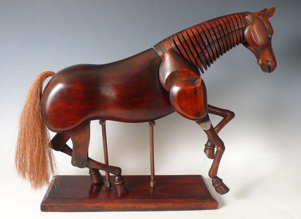 20th Century A beautiful French painter's horse dummy ,fully articulated
