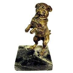 A rare Austrian pug dog inkwell.