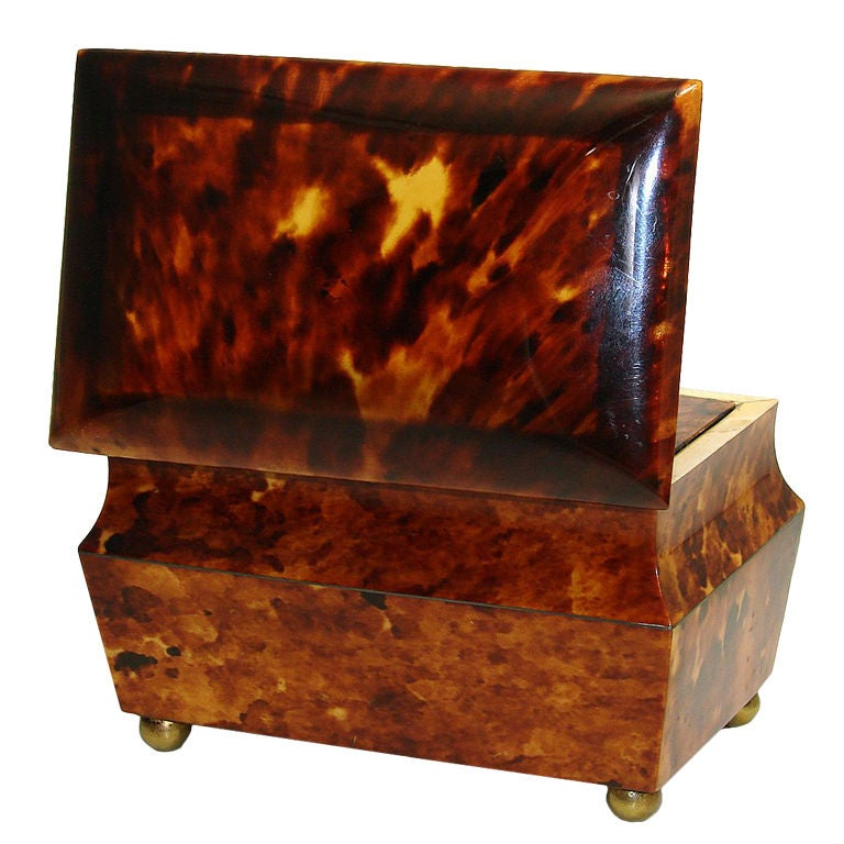 Antique Victorian Era Tortoise Shell Double Well Tea Caddy