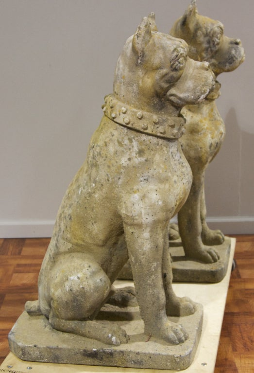 Pair Of Cast Stone Dog Statuary At 1stdibs