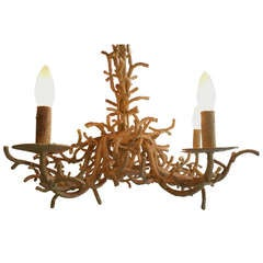 Wrought Iron Faux Coral Chandelier