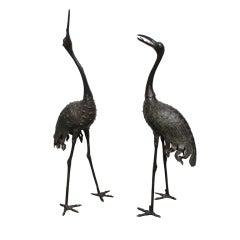 "Bronze ""Red Crowned"" Cranes"
