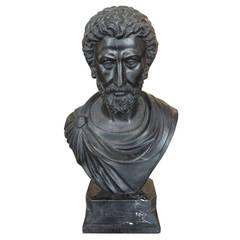 Bust of a Roman Senator