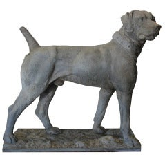 Extremely Rare 19th Century English Short Haired Pointer