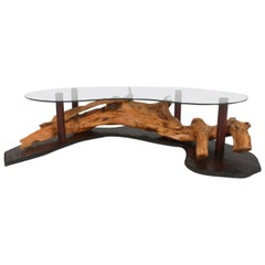 Unique Mid-Century Modern Rustic Driftwood Glass Top Coffee Table