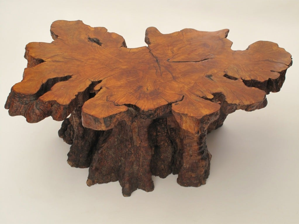Organic Burlwood Redwood Coffee table 1960's 2 - Organic Burlwood Redwood Coffee Table 1960's At 1stdibs