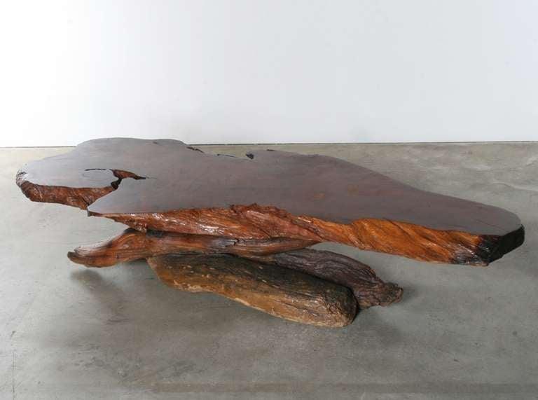 tree slab coffee table 3