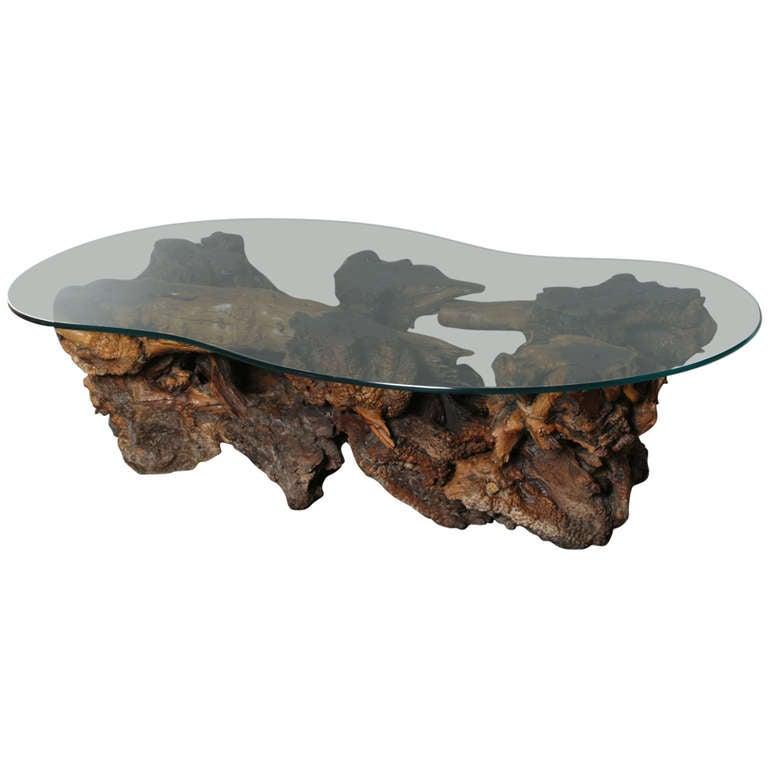 California Burl Wood Coffee Table With Amoeba Glass Top At