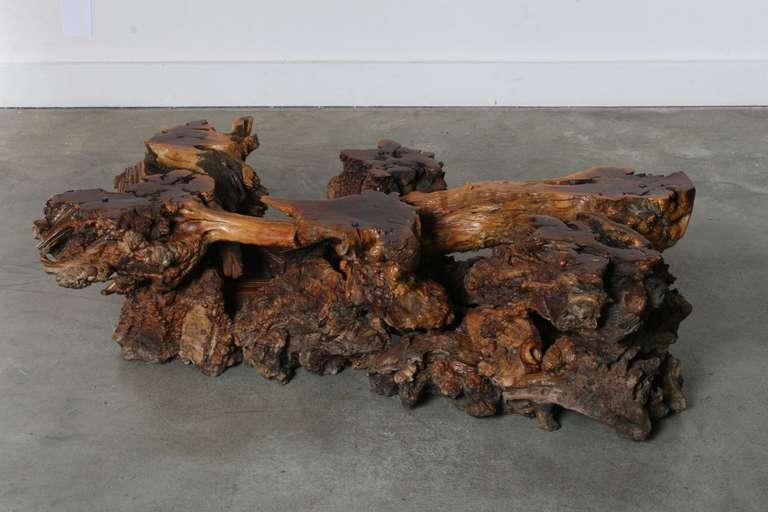 California Burl Wood Coffee Table with Amoeba Glass Top 5