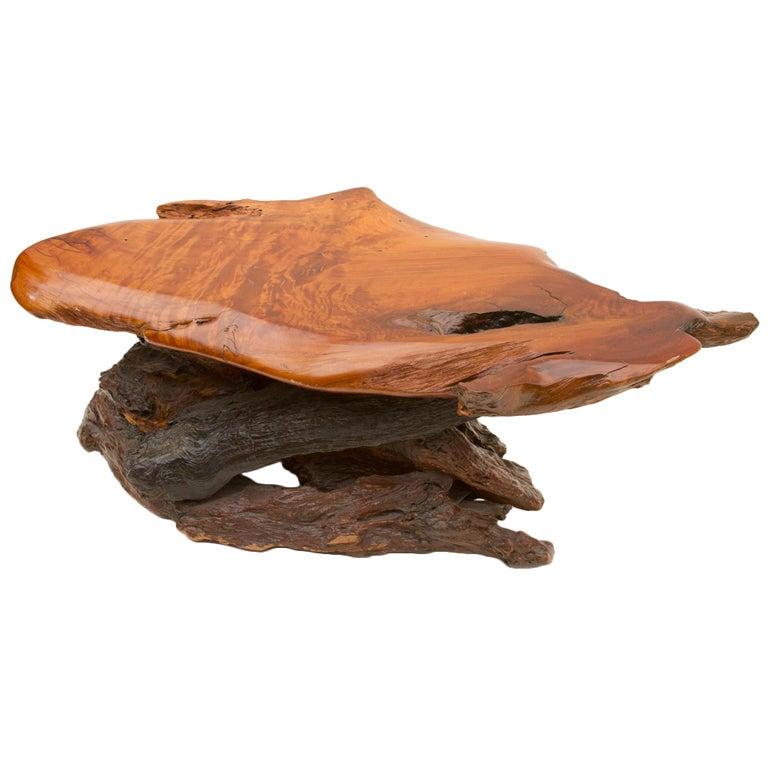 Slab Burl Wood Organic Vintage California Coffee Table At 1stdibs