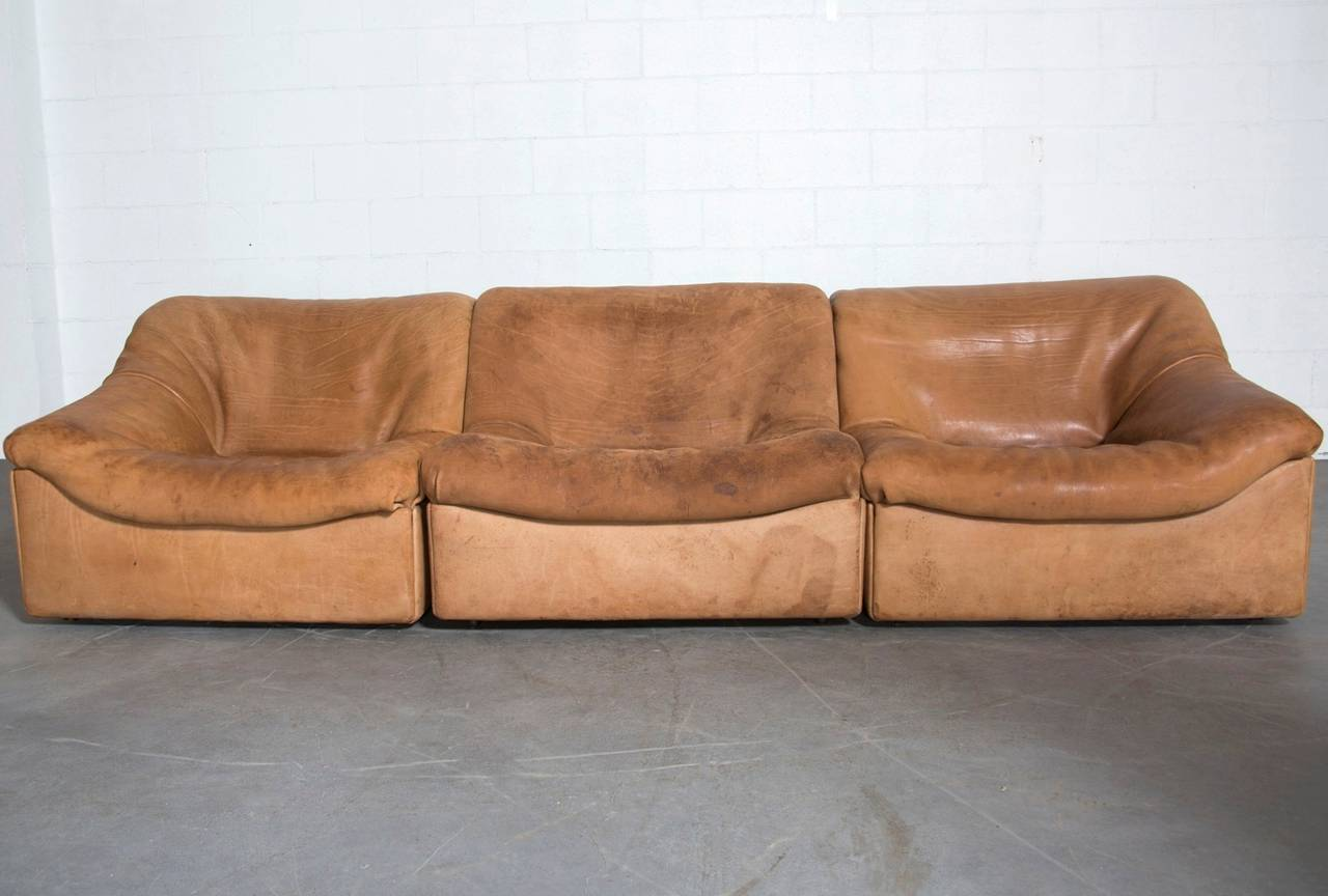 De Sede Ds46 Three Piece Sectional Sofa In Buffalo Leather At 1stdibs