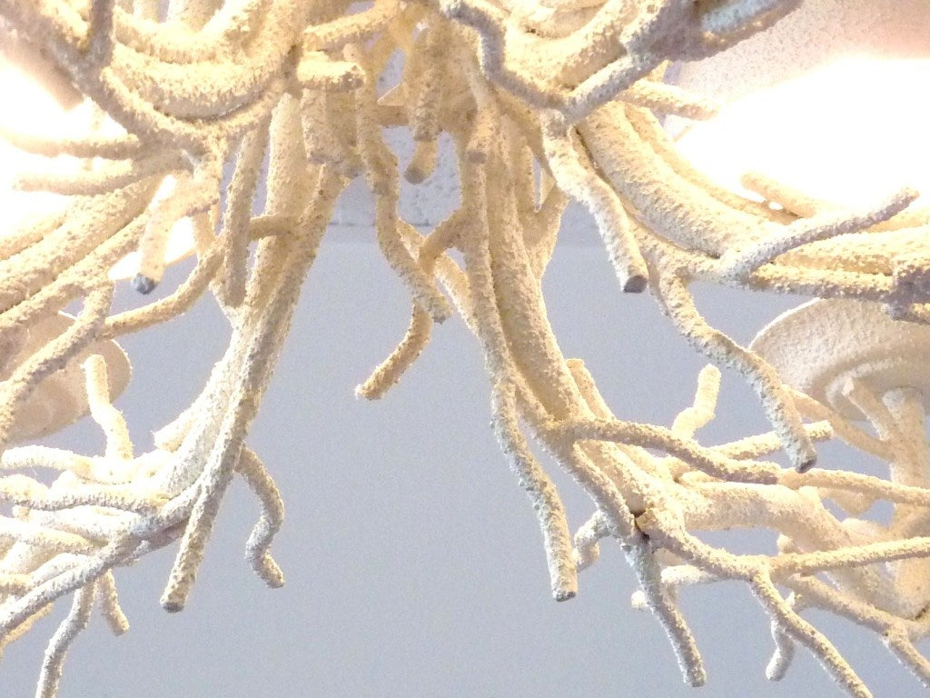 Coral Chandelier 4