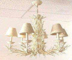 Coral Chandelier image 7
