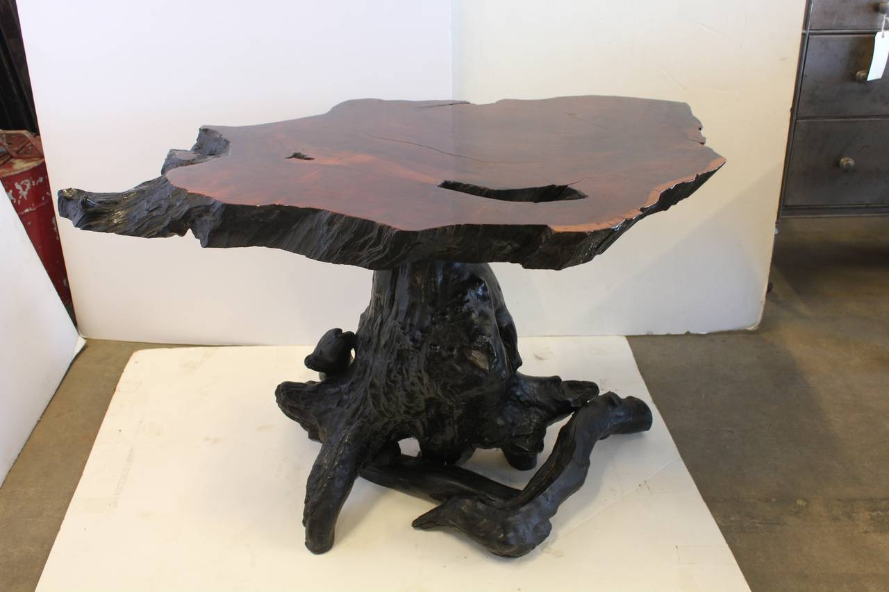 Spectacular Redwood Tree Trunk Root Table For Sale At