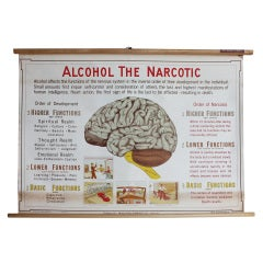 """Antique """"Alcohol The Narcotic"""" Poster"""