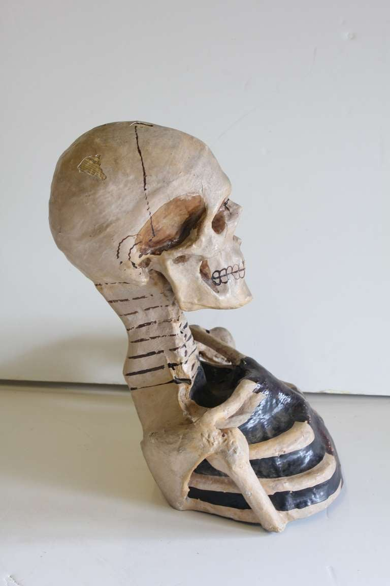 1800's Original Odd Fellows Paper Mache Skeleton Bust 4