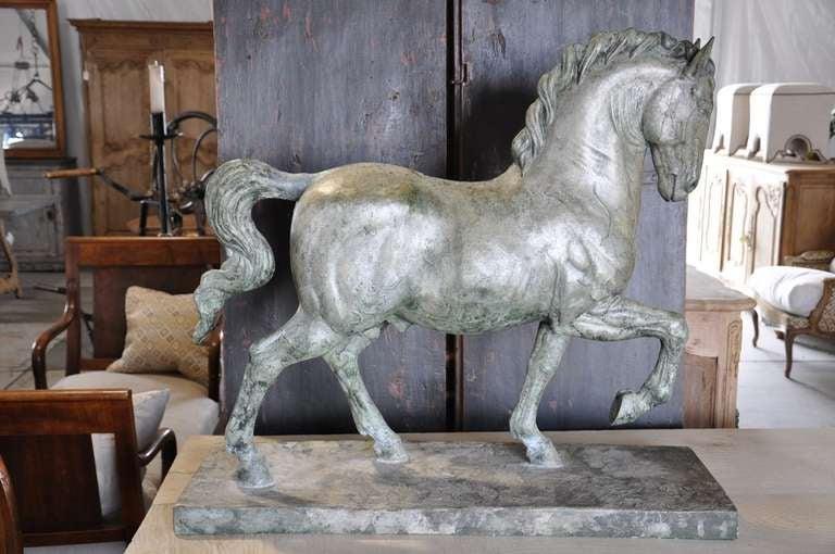 Da vinci horse study courses