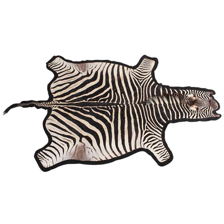 Large Burchell Zebra Skin Rug At 1stdibs