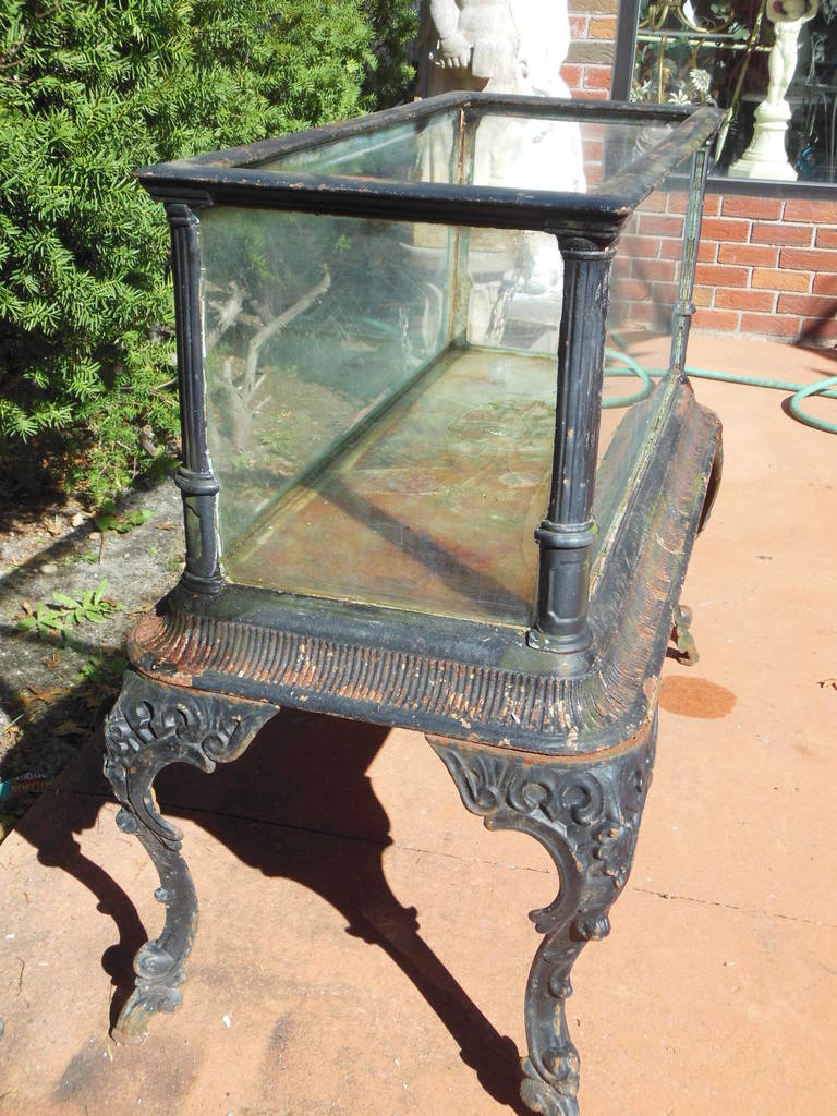 Fiske cast iron antique aquarium or fish tank at 1stdibs for Does fish have iron