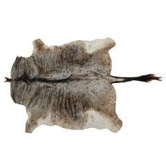 Wildebeest Hide Rug