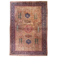 19th Century Agra Rug