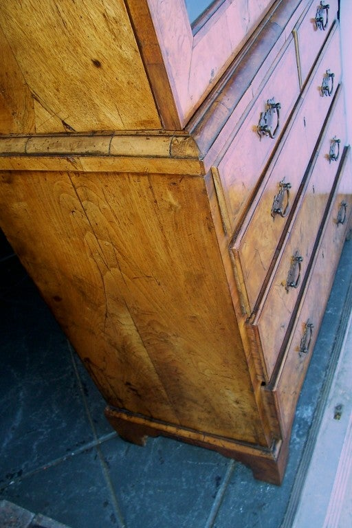 George I Burr Walnut and Walnut Bureau Bookcase For Sale 2