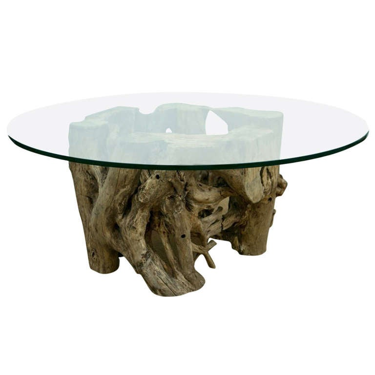 Single Piece Cypress Trunk Cocktail Table At 1stdibs