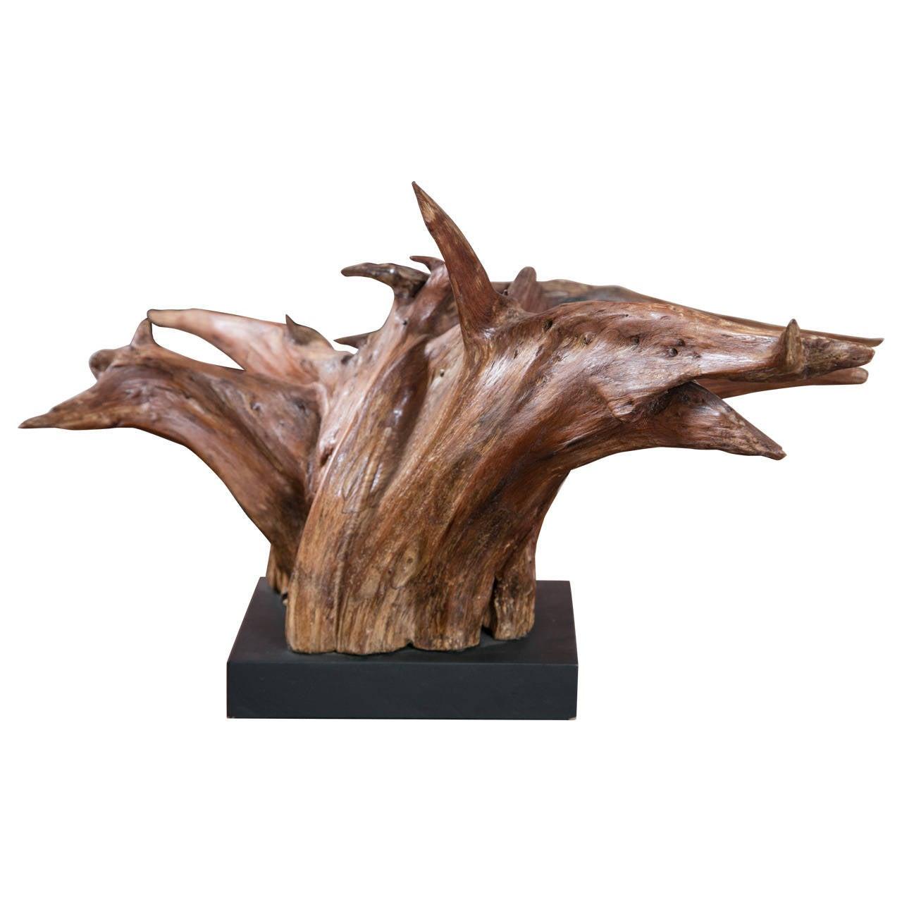 mounted driftwood sculpture at 1stdibs. Black Bedroom Furniture Sets. Home Design Ideas