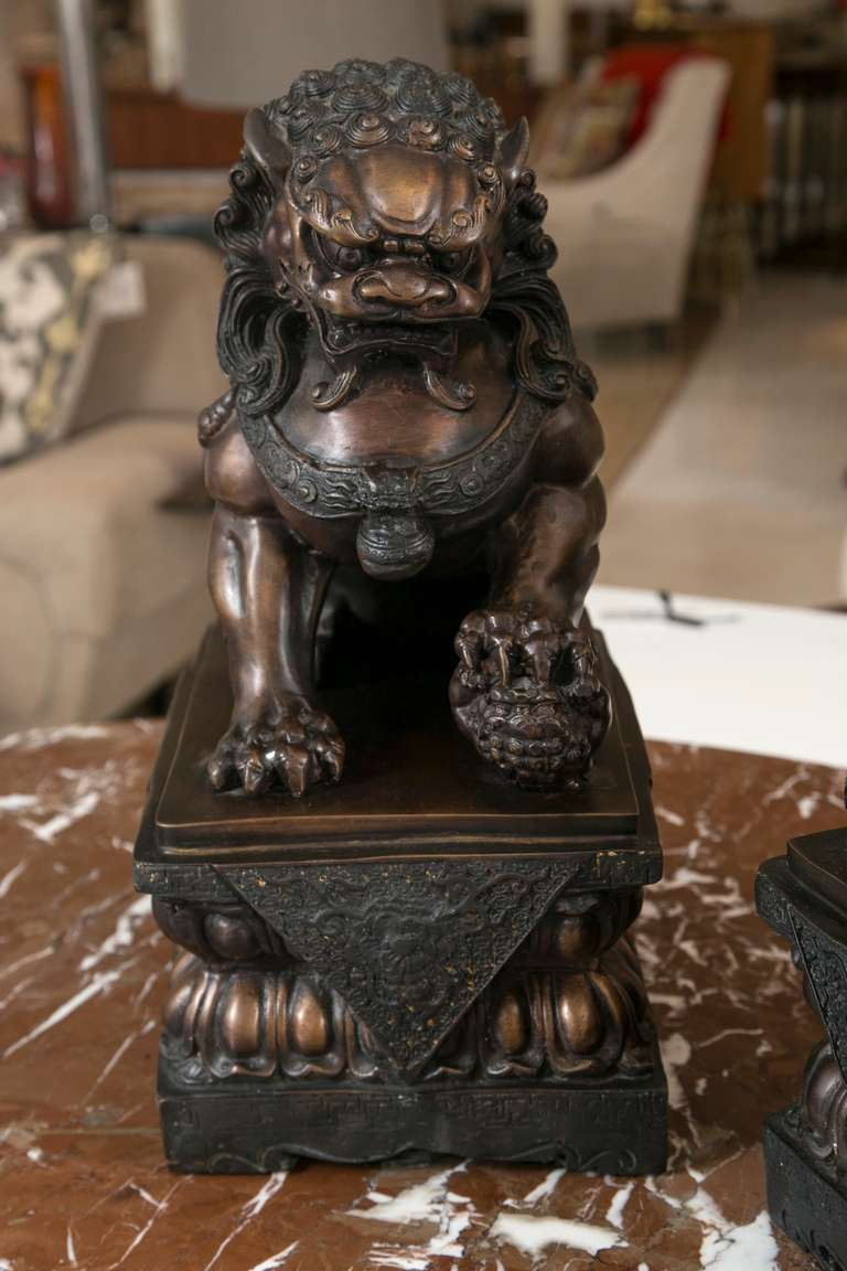 Antique Foo Dogs For Sale
