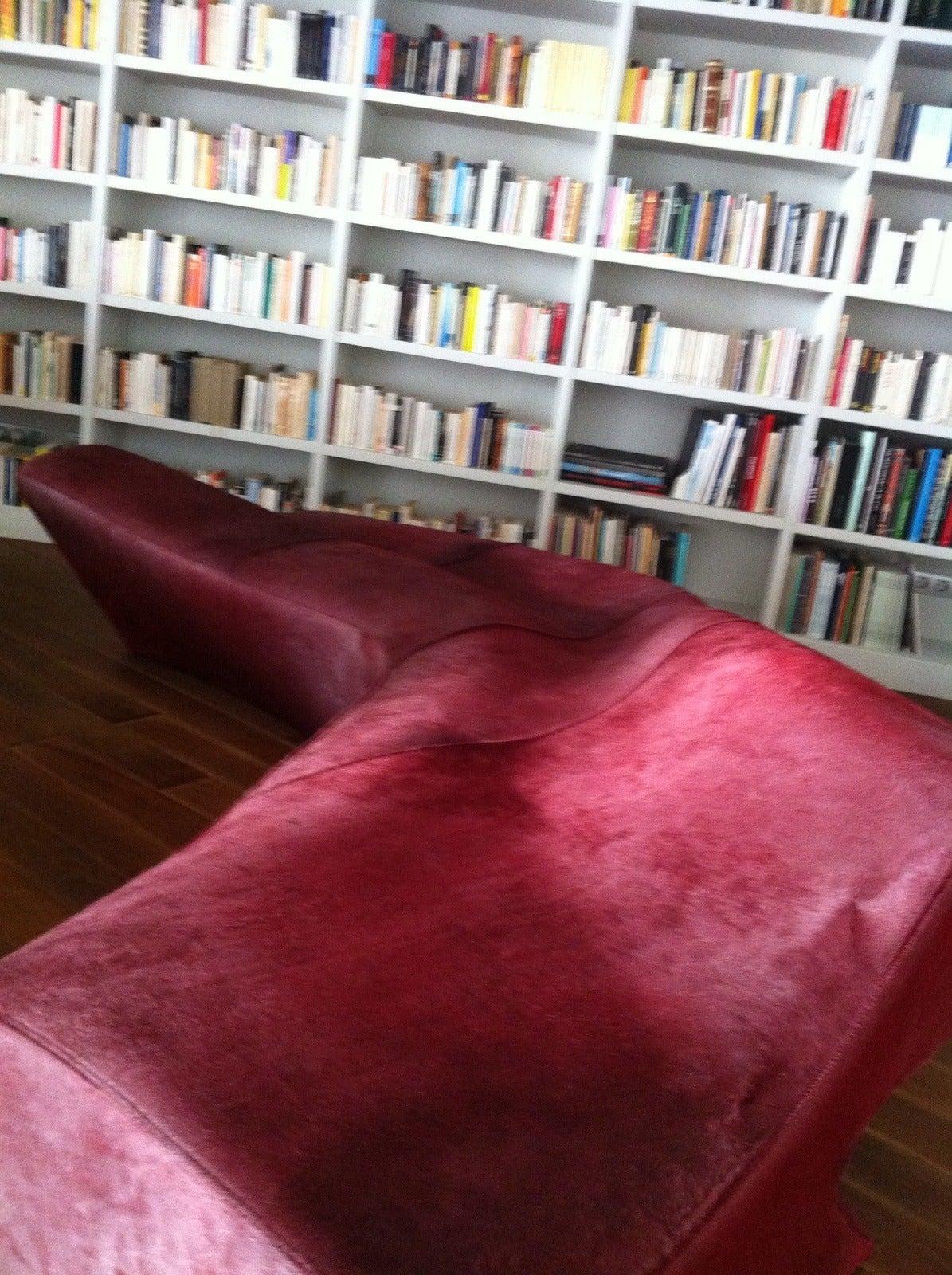 Zaha Hadid Moraine Sofa Red Fantasy Leather Pony Hide