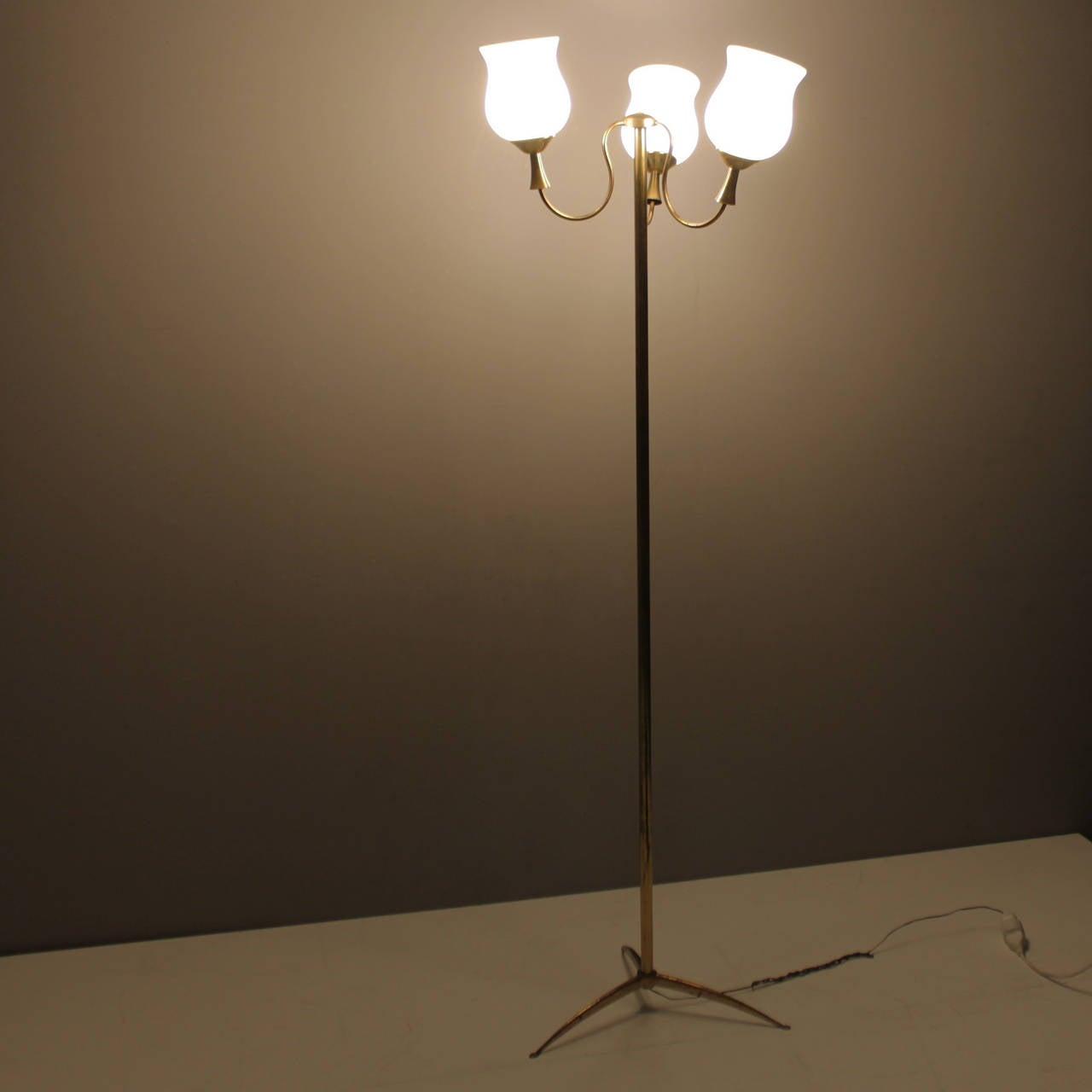 Elegant Italian Floor Lamp By Arredoluce