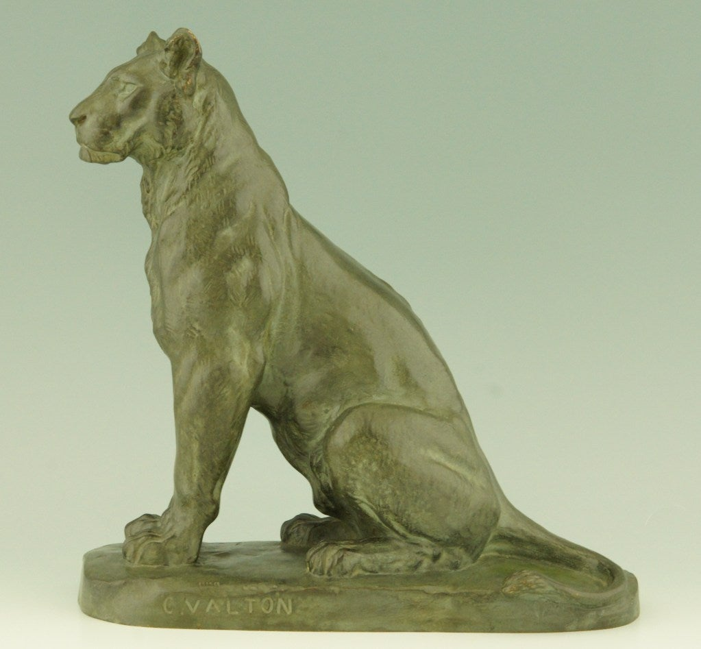 Lion sitting profile - photo#4