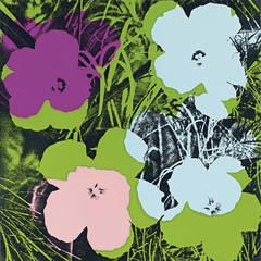 Andy Warhol Flowers Portfolio, 1970