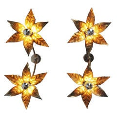 Willy Daro Attributed Double Flower Sconces, Belgium 1970