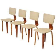 Cor Alons chairs for Gouda den Boer 1953