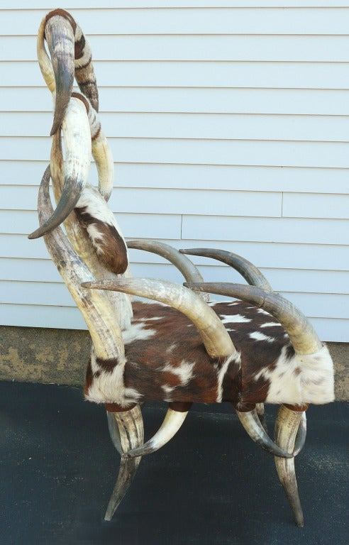 20th Century Cow Horn Chair For Sale