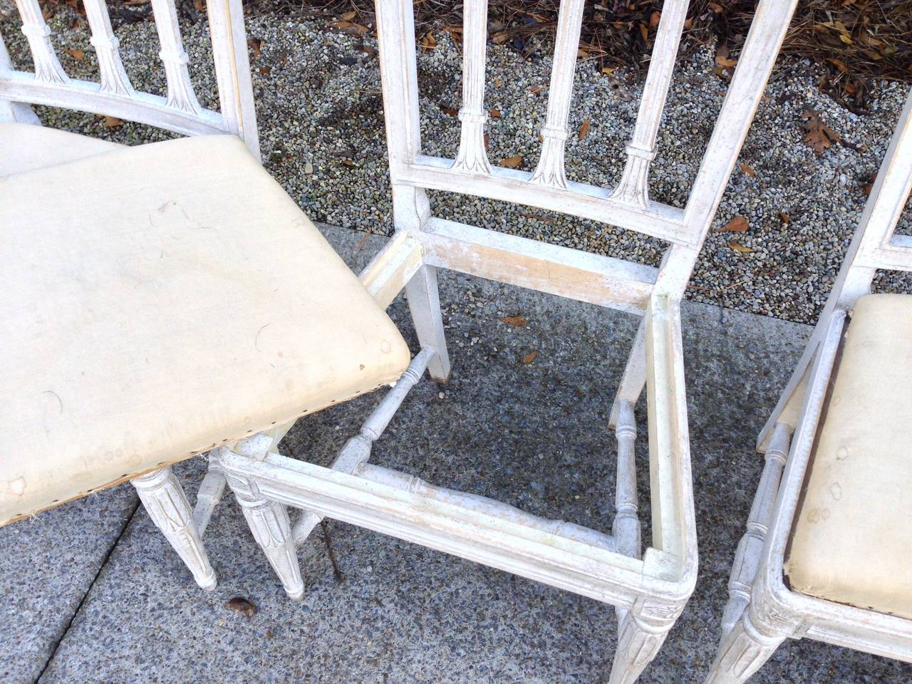 Set of Six Swedish Gustavian Dining Chairs For Sale 1