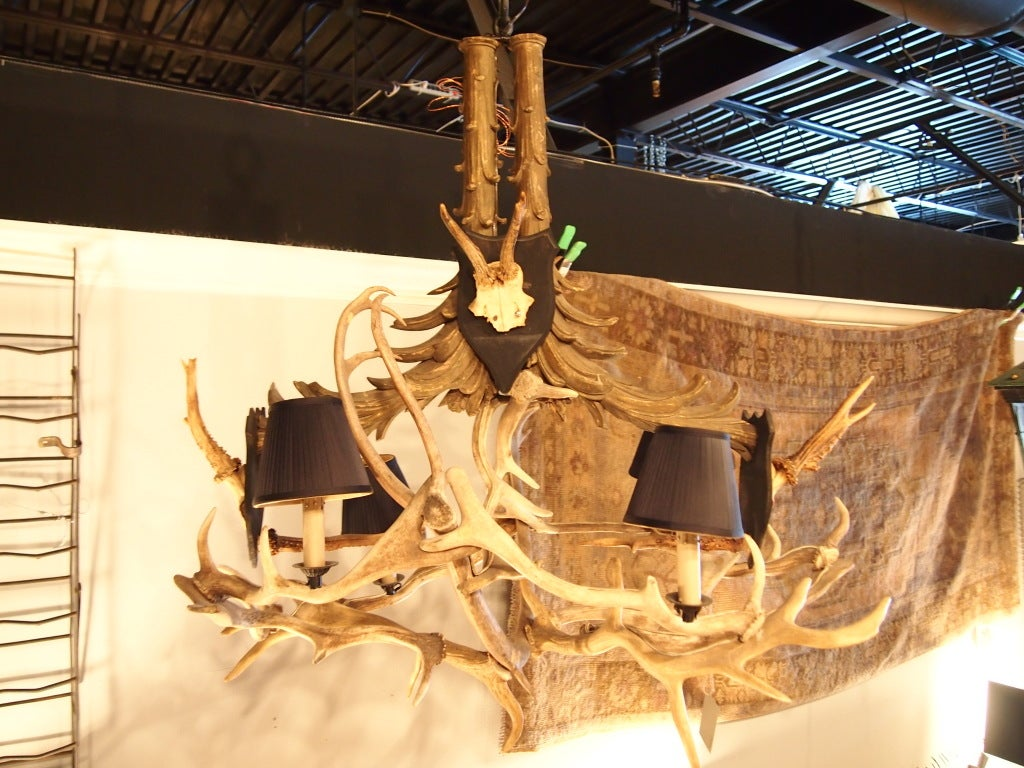 Unusual 6 light French Antler chandelier. Unusual carved top with mounts. 6 black shirred silk shades.