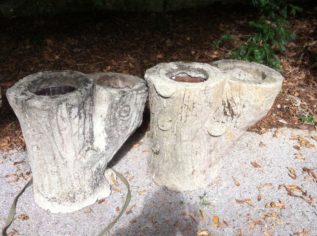 Fabulous Pair of Antique French Faux Bois Trunk Planters @ 1250 each