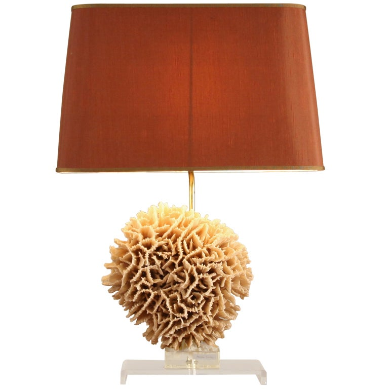 European Table Lamp With Decorative Pavona Cactus Base At