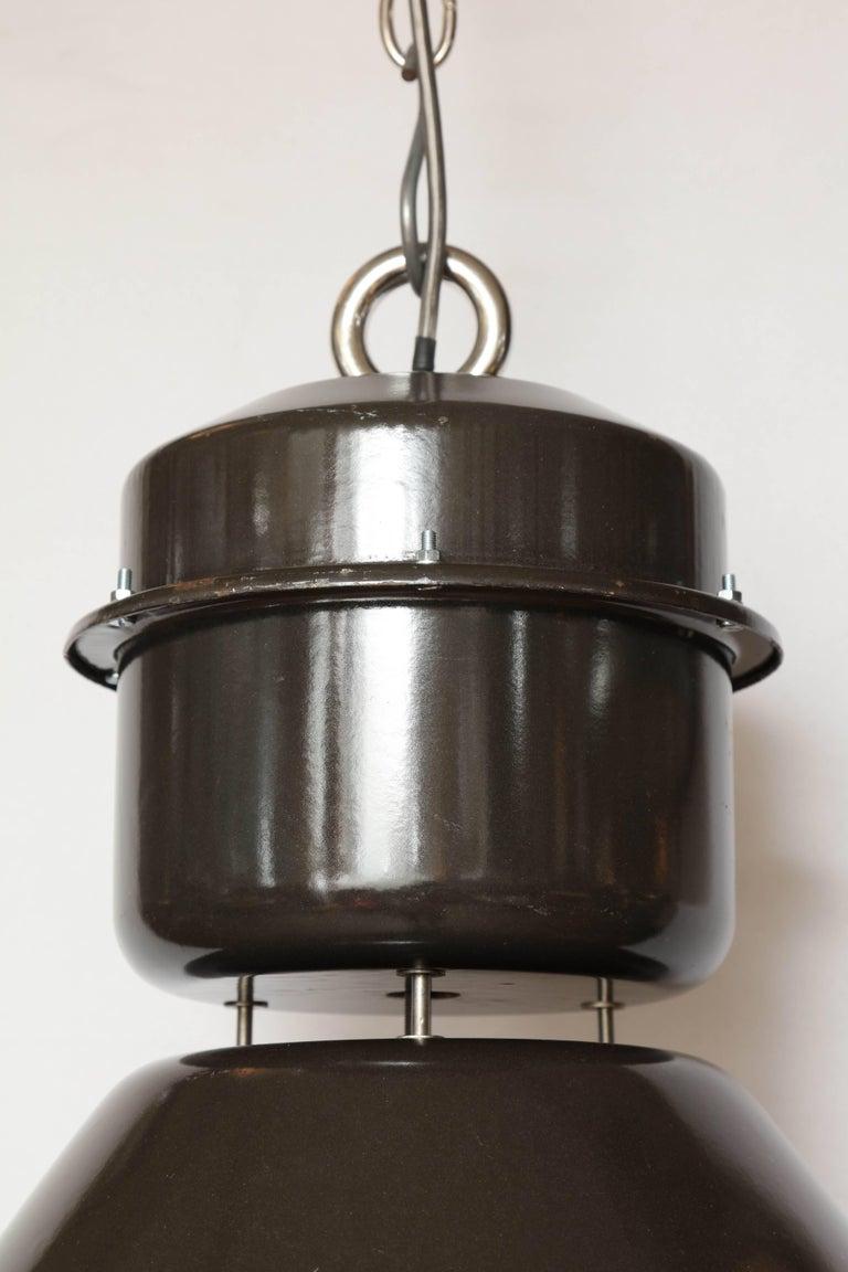 20th Century Czechoslovakian Pendant Light For Sale