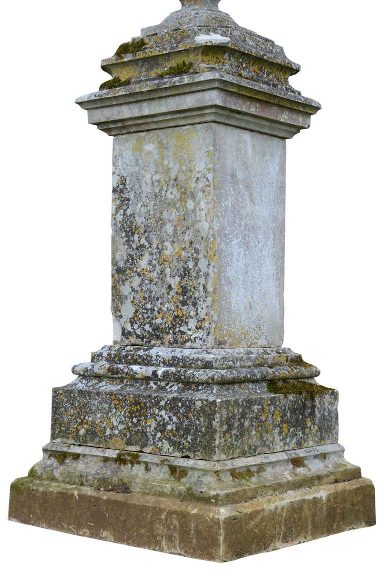 Important stone vase and its pedestal 19th century at for Garden and its importance